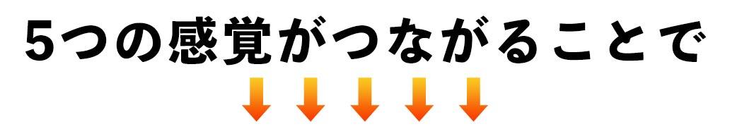 ビジョントレーニングで5つの感覚が繋がることで得られるメリット