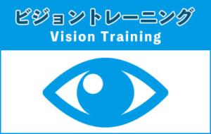 ビジョントレーニング